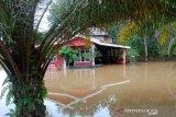 Debit air Sungai Batanghari meningkat
