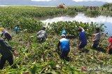 PLN Sulutenggo komit bersihkan Danau Tondano guna tingkatkan kinerja PLTA