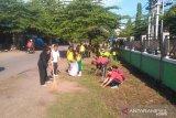 Rp2 miliar untuk tanggulangi KLB DBD di Sikka, Flores