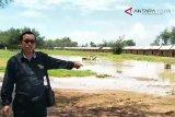 VIDEO: Komisi IV: lokasi relokasi pedagang Pantai Glagah tidak layak