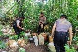 Aparat kepolisian musnahkan ribuan liter minuman keras tradisional