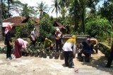 DPRD Kulon Progo meminta dinas pertanian dampingi kelompok wanita tani