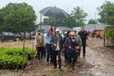 Presiden Jokowi: Kebijakan nasional dan daerah harus sensitif soal bencana