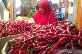 Awal tahun, cabai dan bawang merah penyumbang inflasi di Padang