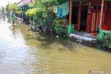 Warga membersihkan rumahnya yang terendam air di Desa Kedungbanteng, Tanggulangin, Sidoarjo, Jawa Timur, Jumat (7/2/2020). Menurut data BPBD Sidoarjo, sebanyak 350 rumah di Desa Kedungbanteng dan Desa Banjarasri terendam banjir selama hampir tiga minggu. Antara Jatim/Umarul Faruq/zk