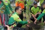 100 pohon dari Jasa Raharja untuk Palangka Raya