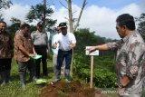 Pemkab Batang canangkan agrowisata Pagilaran jadi ikon wisata