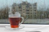 Minum teh dan air hangat bisa cegah COVID-19?