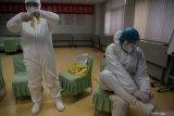 Yunnan, China ditemukan virus hanta, satu orang tertular meninggal