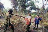 Kebakaran gambut berlanjut di Sungai Apit Siak, 21 hektare hangus