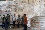 6.980 ton beras petani ditampungBulog Riau Kepri