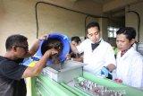 Balai Penelitian dan Pengembangan Kemenperin optimalkan daur ulang kertas