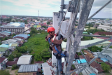 Perayaan Cap Go Meh 2020, XL Axiata Tambah Kapasitas Jaringan