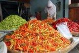 Disperindag DIY sebut harga cabai di Yogyakarta mulai menurun