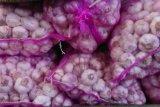 Bawang putih Malaysia