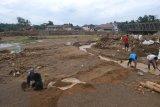 Warga keluhkan perkebunan bambu rusak akibat banjir di Lebak