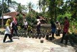 Kulon Progo melibatkan 187 kelompok wanita tani sediakan sayuran BPNT