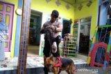 Anjing pelacak diturunkan di tempat penitipan balita tanpa kepala