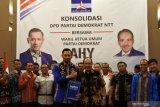 NTT usung AHY jadi calon ketua umum di Kongres 2020