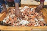 Nelayan mengumpulkan rajungan hasil tangkapan di Karangsong, Indramayu, Jawa Barat, Selasa (18/2/2020). Kementerian Kelautan dan Perikanan (KKP) menargetkan menyatakan komoditas rajungan mampu memberikan kontribusi besar terhadap target ekspor produk perikanan 2020 sebesar USD 6,47 miliar. ANTARA JABAR/Dedhez Anggara/agr