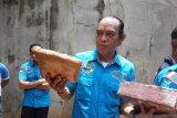 Tanggapan Polri atas penunjukan Irjen Arman Depari sebagai Komisaris Pelindo I