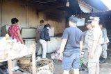 Distan Mataram belum menemukan virus flu babi