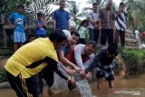 Masyarakat sambut baik bantuan benih ikan
