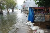 Air Danau Singkarak meluap menggenangi lahan pertanian dan rumah warga (Video)