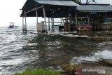 Debit air Danau Singkarak meluap genangi lahan dan rumah warga