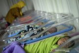 Perawat memberikan susu kepada balita yang baru lahir di Ruangan Perinatologi Rumah Sakit Khusus Ibu dan Anak (RSKIA) Bandung, Jawa Barat, Jumat (21/2/2020). Badan Pusat Statistik memprediksi jumlah penduduk Indonesia pada 2045 mencapai 319 juta jiwa berdasarkan penelitian melalui proses perhitungan dengan metode ilmiah yang bisa dipertanggungjawabkan. ANTARA JABAR/Raisan Al Farisi/agr