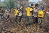 Wagubri : Karhutla intai lima juta hektare gambut Riau