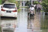 Warga melintasi banjir yang menggenang di perumahan Artha Graha, Sindang, Indramayu, Jawa Barat, Rabu (26/2/2020). Banjir akibat hujan deras yang terjadi pada Minggu (23/2) lalu masih merendam puluhan rumah di daerah tersebut. ANTARA JABAR/Dedhez Anggara/agr