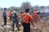 Dua hektare kebun kelapa sawit di Agam terbakar