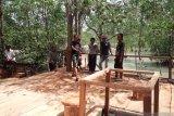 DKP Bangka Barat dukung pembangunan objek wisata mangrove terpadu Tanjungpunai