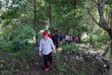 Wabup Palandung survei jalan  Makoa - Pangilolong