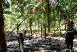 Pondok terbakar, satu keluarga di Inhil dilarikan ke rumah sakit