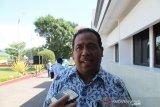 Tidak digunakan warga, Pemkab Jayawijaya tidak adakan pengadaan babi putih