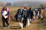 Migran banjiri Yunani setelah Turki buka perbatasan