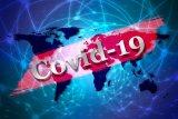Legislator serukan untuk pembentukan gugus tugas tangani COVID-19