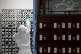 China laporkan penurunan terbanyak kasus baru corona