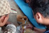 Gerebek rumah terduga pengedar tramadol di Dompu, polisi amankan pelaku