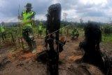 Prajurit TNI melakukan penanaman pohon saat Pencanangan Gerakan Pemulihan Kawasan Bekas Kebakaran Hutan dan Lahan (Karhutla) di konsesi restorasi ekosistem PT Alam Bukit Tigapuluh (ABT), Pemayungan, Sumay, Tebo, Jambi, Jumat (28/2/2020). Kegiatan yang menargetkan penanaman 100 ribu pohon berbagai jenis di kawasan bekas Karhutla tahun 2019 lalu yang merupakan penyangga Taman Nasional Bukit Tigapuluh (TNBT) dan menjadi rumah bagi sejumlah satwa khas, hampir punah, dan dilindungi tersebut bagian dari upaya pemulihan kawasan yang melibatkan sejumlah pihak. ANTARA FOTO/Wahdi Septiawan/wsj.