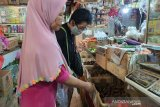 Jahe merah menipis di Pasar karena dianggap ampuh tangkal corona