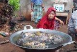 Kearifan lokal masyarakat Wakatobi dalam menjaga alam