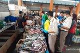 Pantau Mutu Ikan, BKIPM Sidak Tempat Pelelangan Ikan Kendari