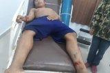 Seorang warga di Konolo Konawe Selatan diterkam buaya