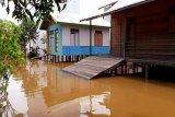 Sungai Barito meluap, warga Desa Kalahien waspadai banjir hingga ke rumah