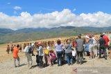 Bupati Jayawijaya: Festival Lembah Baliem kemungkinan dibatalkan karena Corona