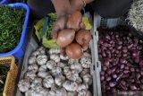 6.800 ton bawang bombai sudah masuk Indonesia