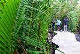 Wisata Green Talao Park Padang Pariaman